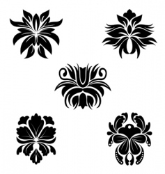 flower patterns vector image vector image