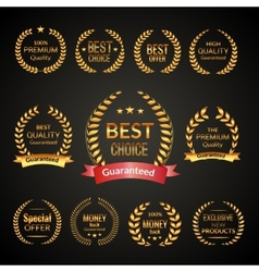 Premium laurel wreath set vector image