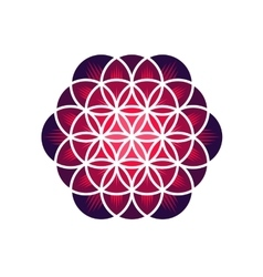 Purple flower of life vector