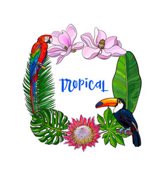 Tropical palm leaves birds flowers square frame vector