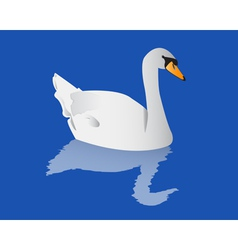 Swan with reflection vector