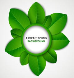 Abstract spring background with green leaves vector