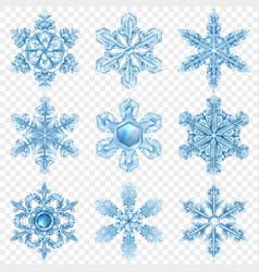 realistic snowflake icon set vector image vector image