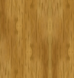 Vecotr bamboo wood texture vector image