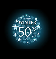 winter sale background snowflakes in the shine vector image