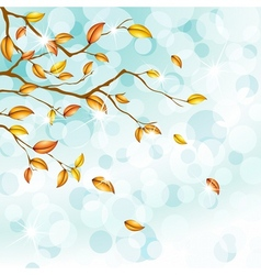 autumn foliage background vector image
