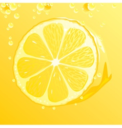 Lemon with bubbles vector