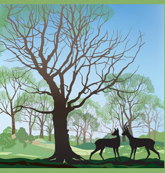 Spring landscape with wild animal deer forest vector