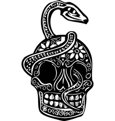 Snake and Skull vector image