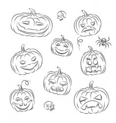 pumpkins sketched vector image