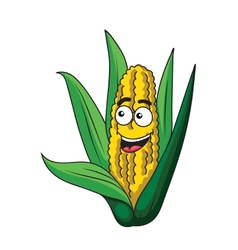 Fresh healthy corn on the cob vector