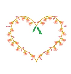 Indian oak flowers in a heart shape vector
