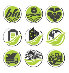 Organic icon set vector