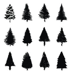 Abstract pine trees silhouette vector