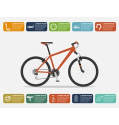 Bike infographic vector