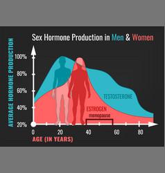 Estrogen decline in women and man vector