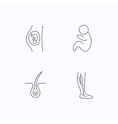 Pregnancy pediatrics and phlebology icons vector image