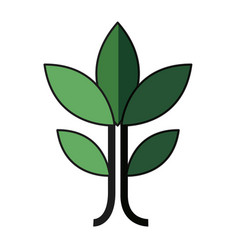 plant leaves natural environment symbol vector image