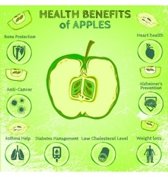 Apple Health Benefits vector image