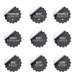 advertising badges and stickers vector image