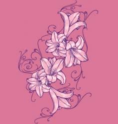 flower tulip vector image vector image