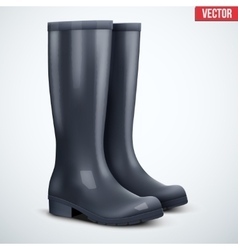 Pair of rain boots vector
