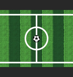 Soccer ball in center field vector image