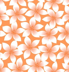 Orange tropical plumeria and hibiscus floral vector
