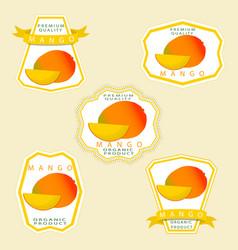 The theme mango vector