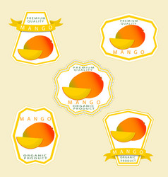 the theme mango vector image