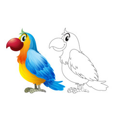 Doodle animal for parrot macaw vector