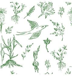 Garden flowers seamless pattern sketch vector image