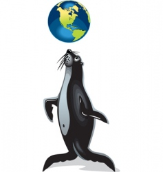 seal playing vector image vector image