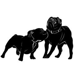 Bulldog dog pug vector