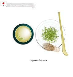 Japanese green tea popular dink in china vector