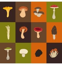 Mushroom set with flat design vector