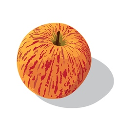Gala apple vector
