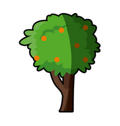 Tree fruit natural flora plant image vector