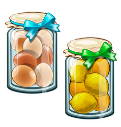 Banks with canned lemons and eggs food vector