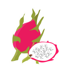 dragon fruit with slice flat design vector image vector image