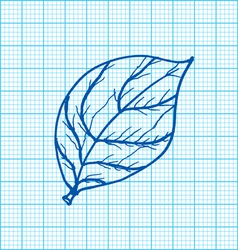 drawing of leaves on graph paper vector image vector image