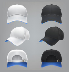 Realistic of a white and black vector