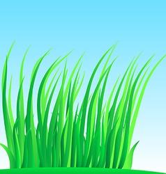 Wisp of lush grass vector