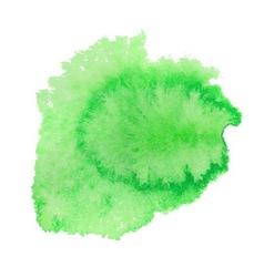 Green watercolor spot vector
