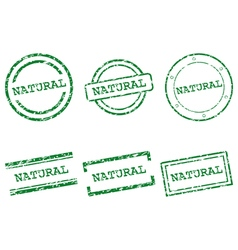 Natural stamps vector image vector image