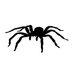 Spider monster silhouette ancient mythology vector
