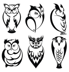 Isolated owl birds in tattoo style vector image