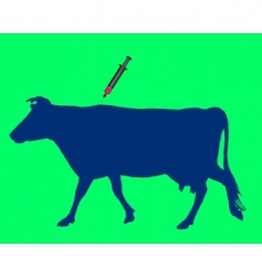 cow gets inoculation vector image vector image