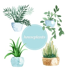Watercolor set of house plants vector