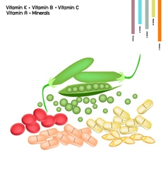 Green peas with vitamin k b c and vitamin a vector